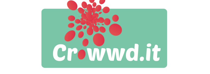 Logo crowwd.it  berarbeitet